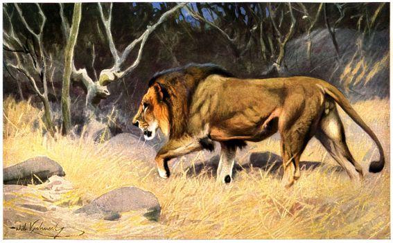 Loewe-painting