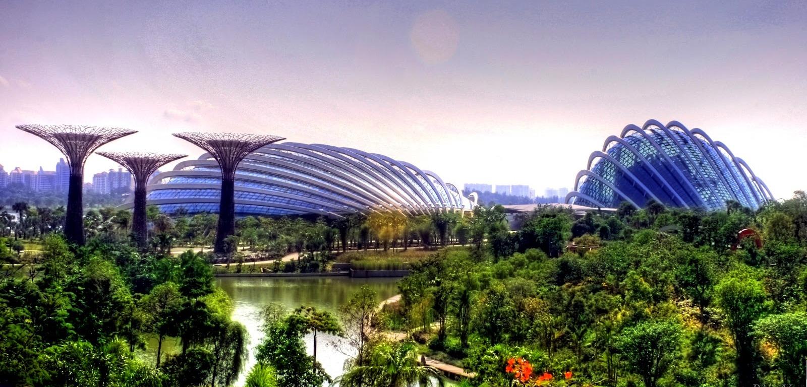 Singapore A Garden City With Plastic Flowers Singapore